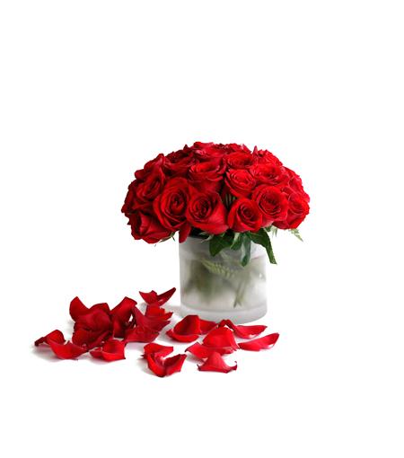 Kenya Floriculture Industry  Flowerweb