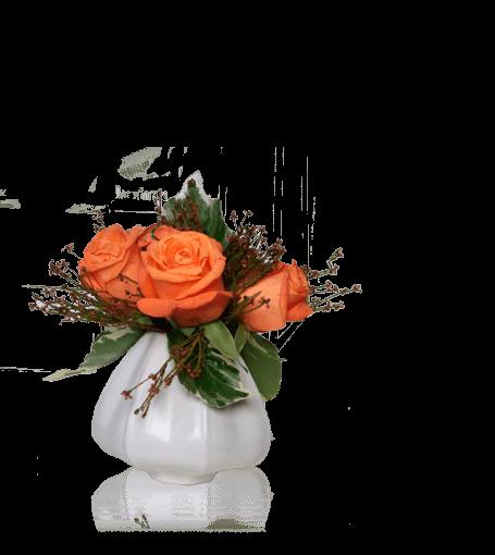 Pote de Rosas Cor-de-Laranja