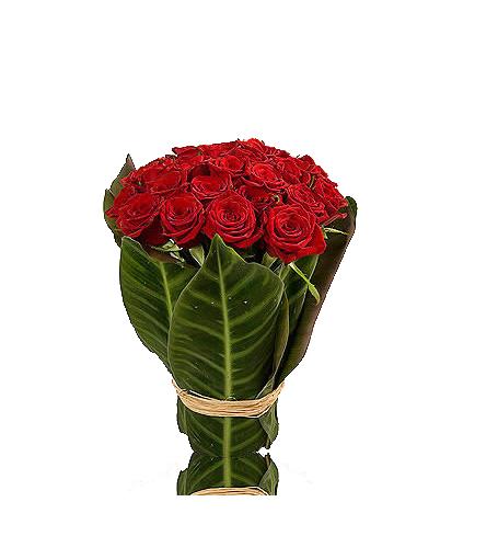 Rosas em Jarra de Folhas