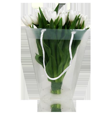 Saco com tulipas Brancas